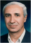 Prof. Hadi Salamati